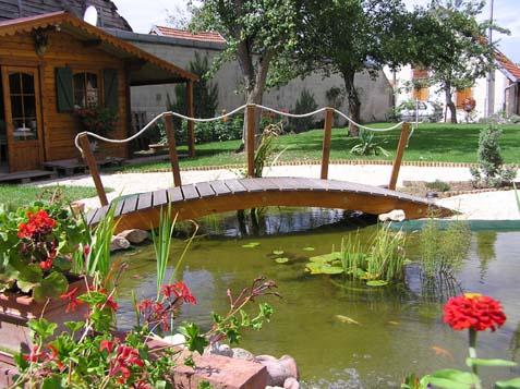 Le Forum De Passion Bassin Bassin De Jardin Baignade Naturelle - Bassin de jardin bois 2